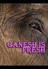 Ganesh Is Fresh