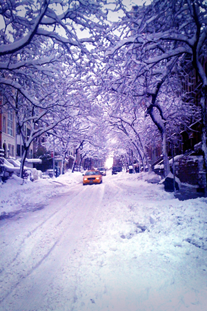 NYC Snow11