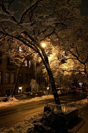 NYC Snow6